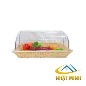 Khay trưng bày thức ăn BF63008
