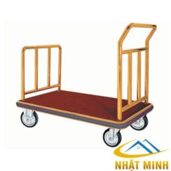 Xe đẩy hành lý chuyên dụng TS11X04-V