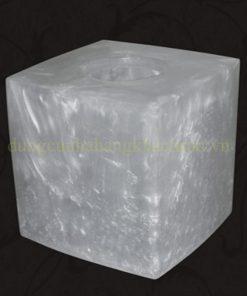 Hộp đựng khăn giấy NT51B05