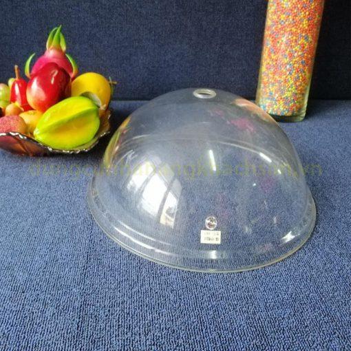 Nắp đậy đĩa nhựa tròn không núm PT28N04