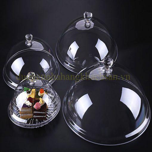 Nắp đậy đĩa nhựa tròn có núm PT28N03