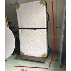 Giường Extra bed Kiểu Đứng PN42G05-20CM